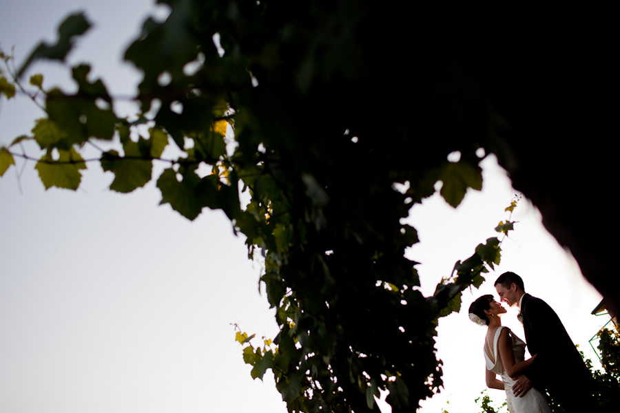 Wine Country Farm Wedding by Portland photographer, Daniel Stark. (28)