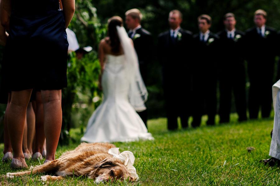 Portland Wedding by Daniel Stark Photography (10)