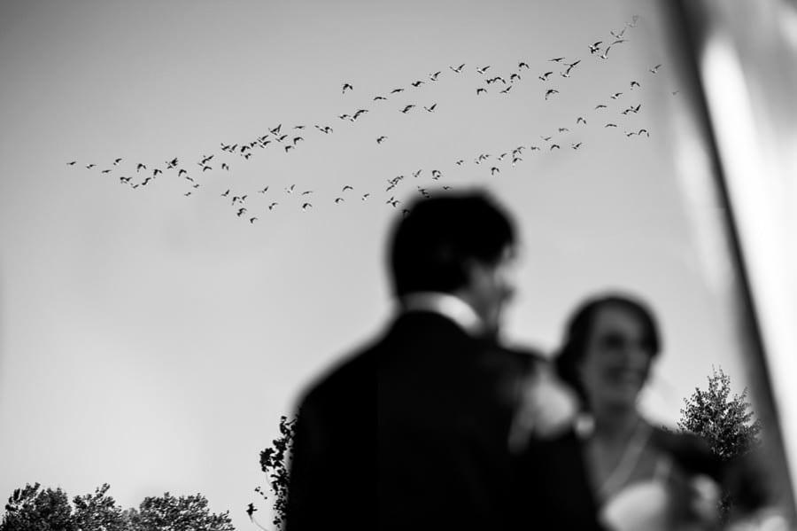 Green Villa Barn Wedding by Daniel Stark Photography
