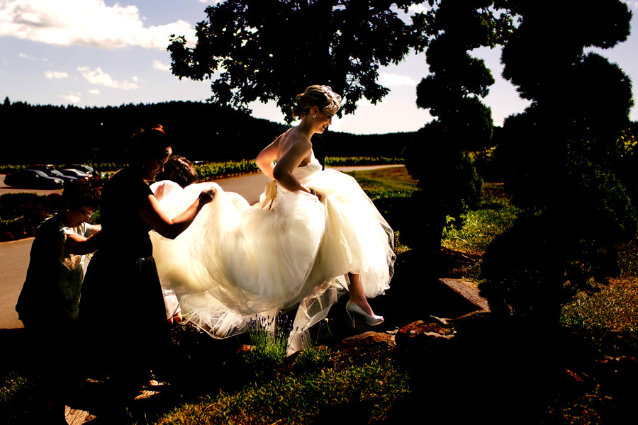Zenith Vineyard Winery Wedding by Stark Photography (16)