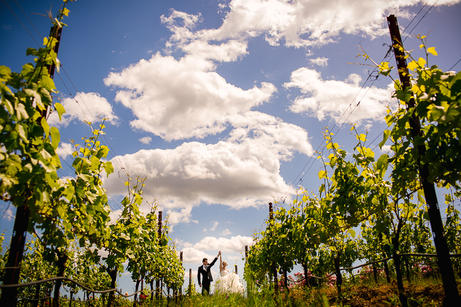 Zenith Vineyard Winery Wedding by Stark Photography (3)