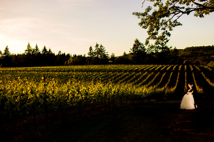A beautiful Zenith Vineyard Winery Wedding by Stark Photography in the dundee hills of Oregon. (2)