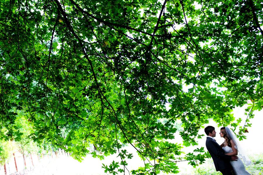world_forestry_center_wedding_stark_photo013