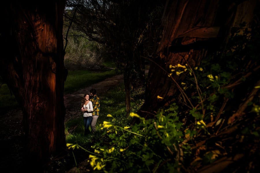 natural_bridges_santa_cruz_california_engagement_0001