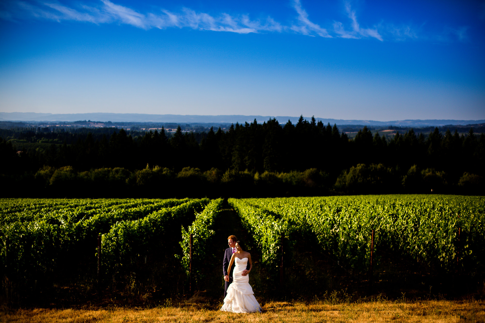 A traditional Indian ceremony and wedding held in Portland, Oregon at the Oregon Historical Society with a Western style wedding at Ponzi Winery in the Willamette Valley by Stark Photography. (5)