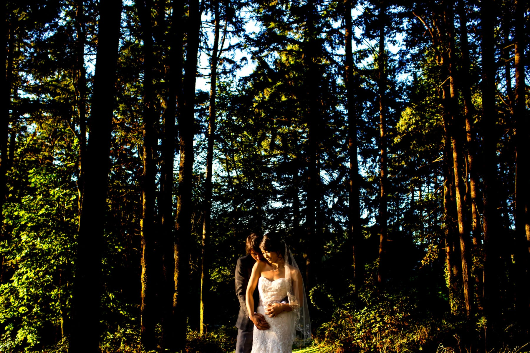 Vista Hills Vineyard Wedding (14)