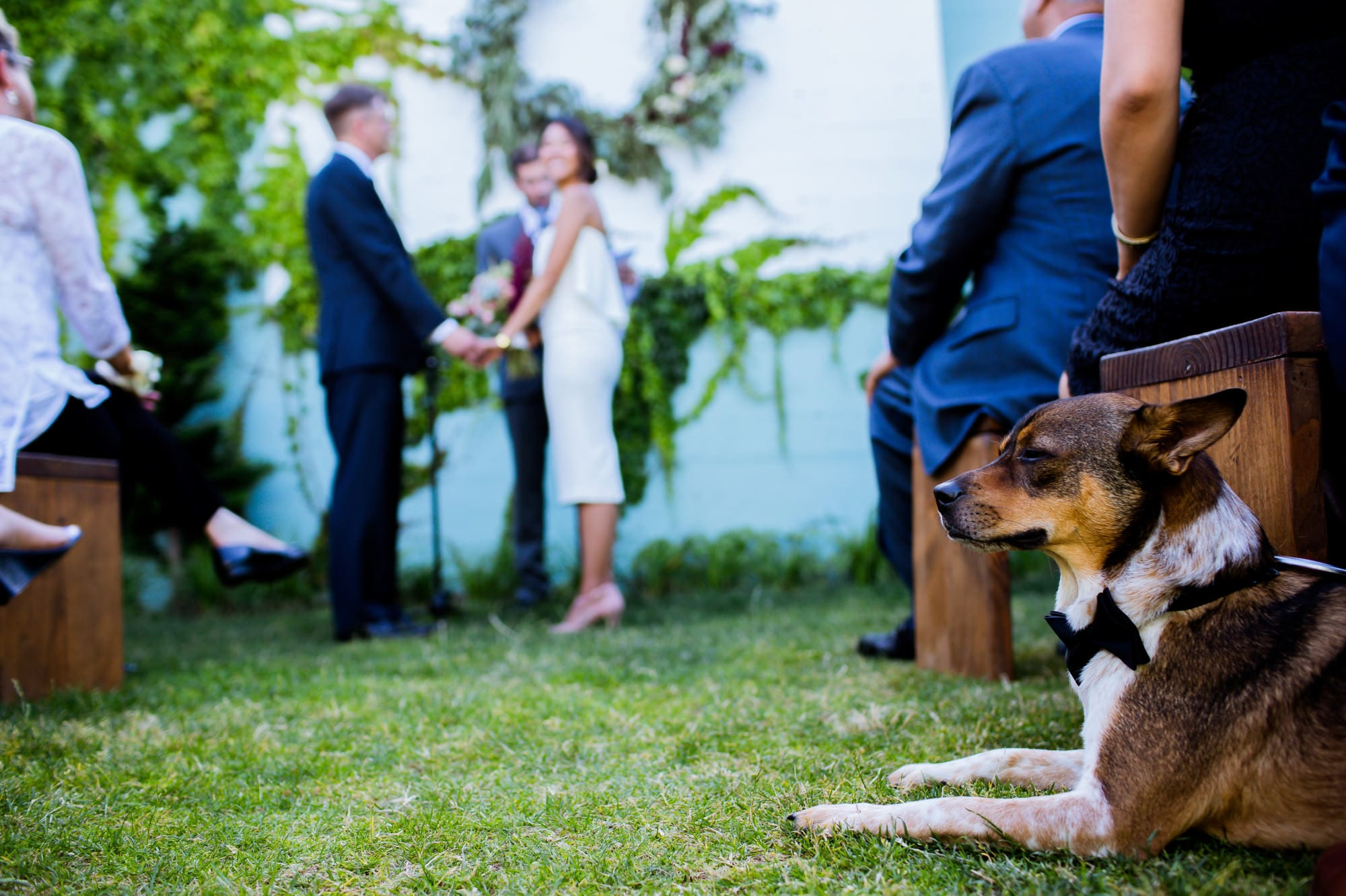 Han Oak Wedding, Portland, Oregon by Stark Photography (26)