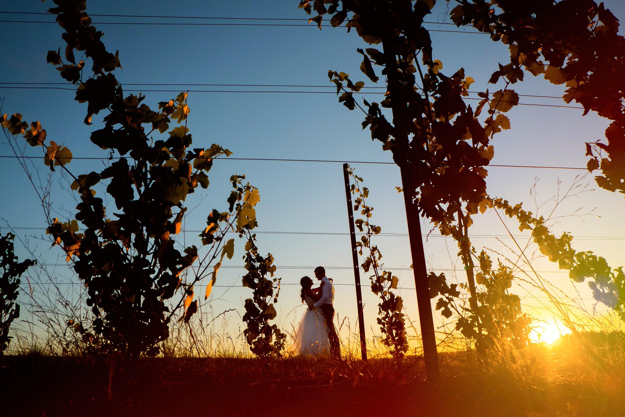 Coria Estates Winery Wedding Venue 030