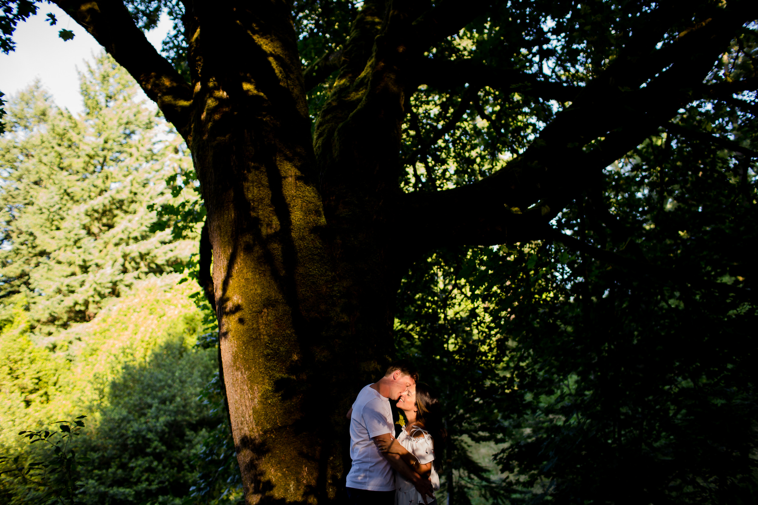 hoyt arboretum portland engagement shoot photos 009