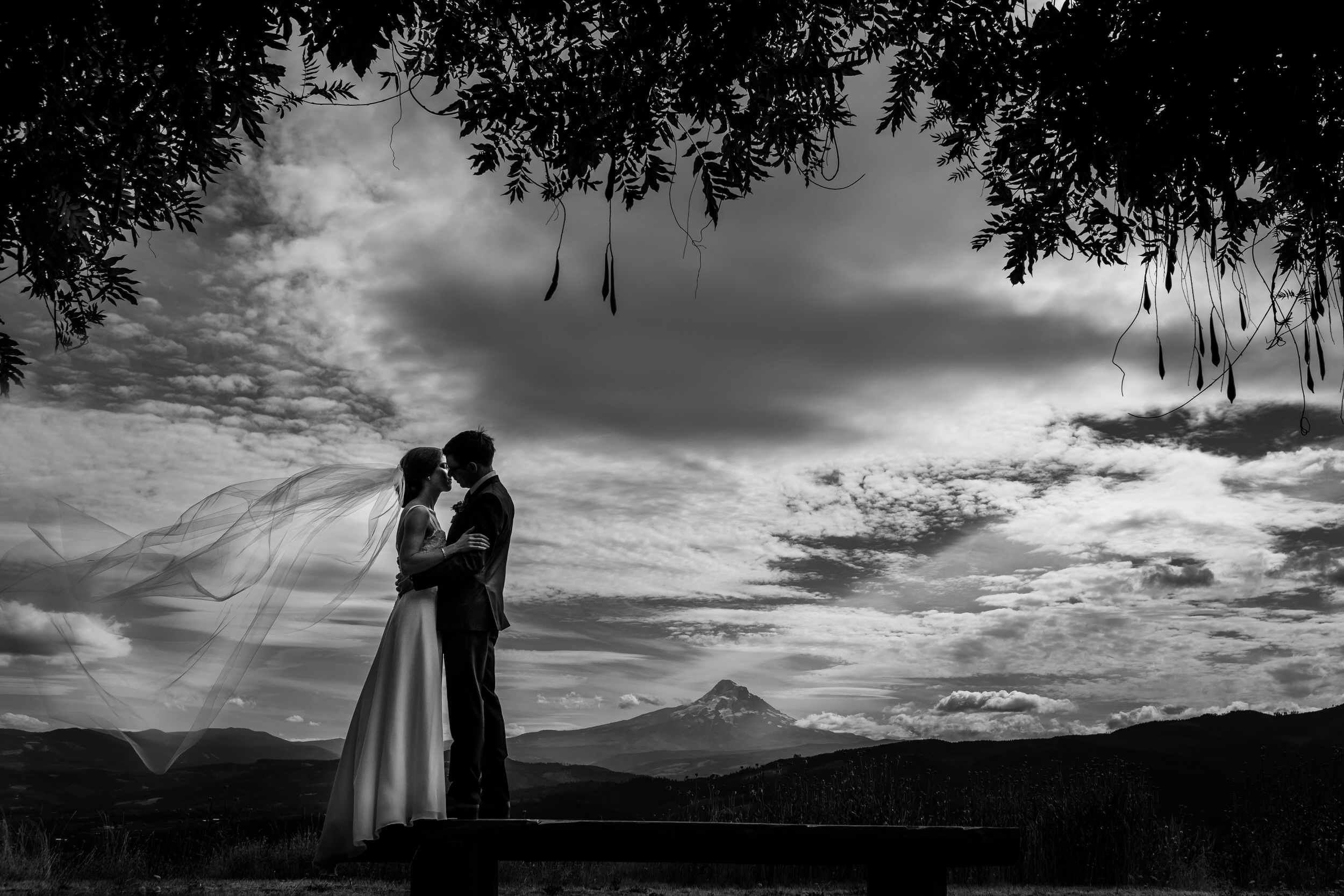 Gorge_Crest_Vineyards_Wedding_Stark_Photography_001